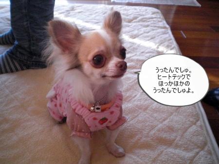 new_CIMG4685.jpg