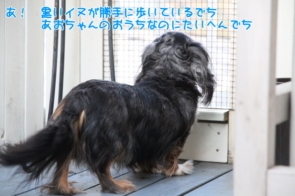 201303290145208b8.jpg