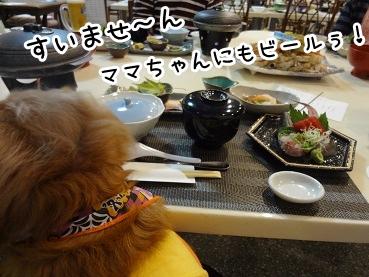 kinako1147.jpg