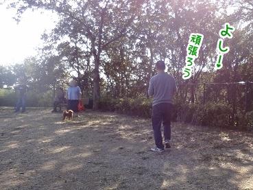 kinako1155.jpg