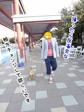 kinako1173.jpg