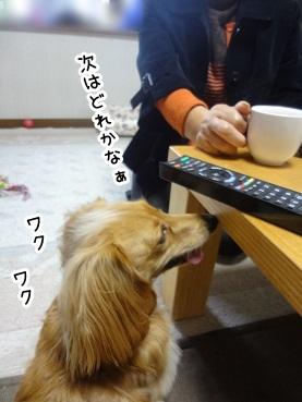 kinako1295.jpg