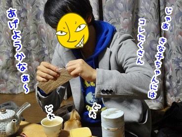 kinako1443.jpg