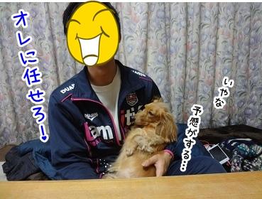 kinako1486.jpg