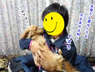 kinako1487.jpg