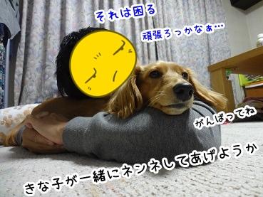 kinako1503.jpg