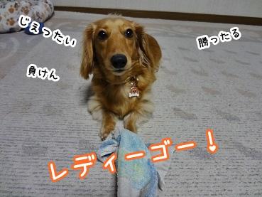 kinako1523.jpg