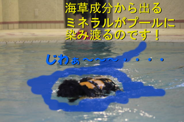 20120706221719b6c.jpg