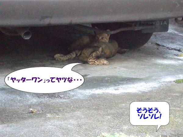 20120804151201bad.jpg