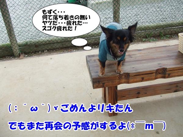 20121007223319ab6.jpg