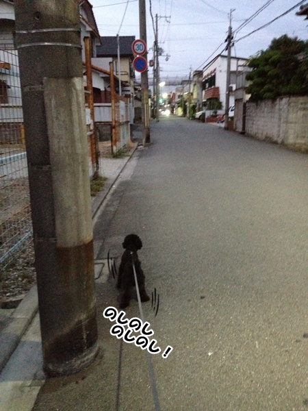 20121009213647ce3.jpg