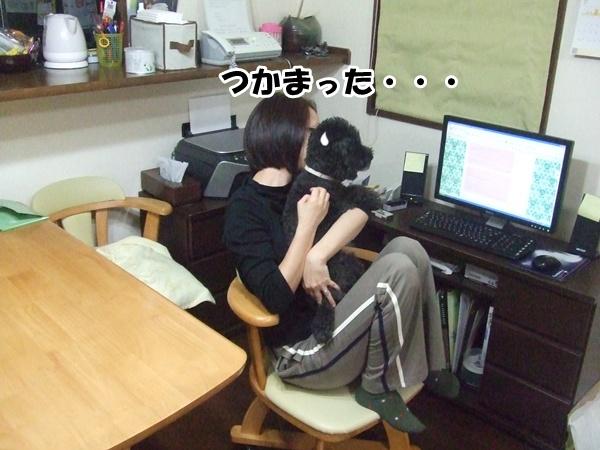 201210192147403b1.jpg