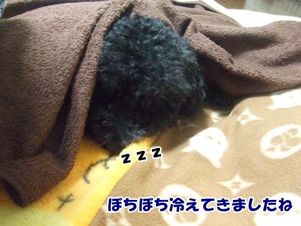 20121019220045f78.jpg
