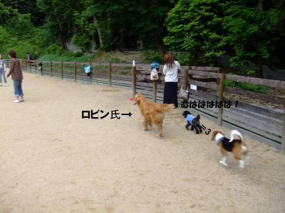 DSCF1564_convert_20120604212936.jpg