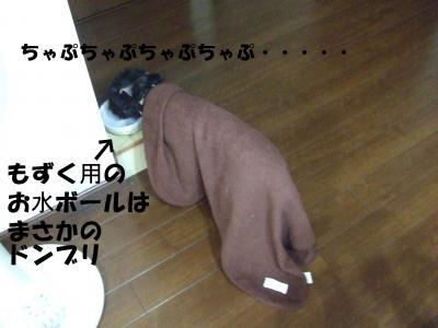 DSCF2004_convert_20120623205913.jpg