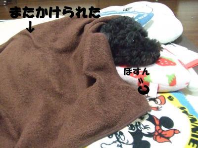 DSCF2008_convert_20120622214034.jpg