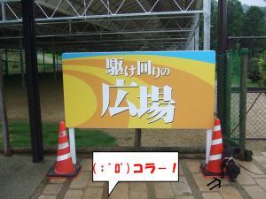DSCF2226_convert_20120630202228.jpg