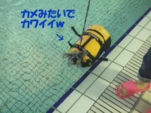 DSCF2284_convert_20120703213243.jpg