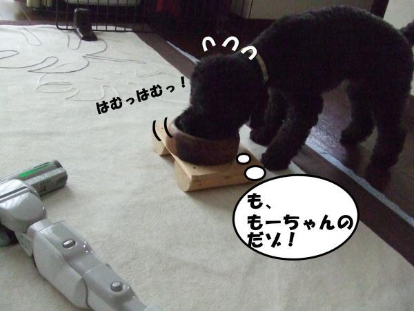 DSCF2609_convert_20120713213859.jpg