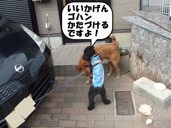 DSCF2672_convert_20120715205408.jpg