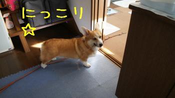 20121016171031f0a.jpg