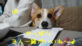 20121027132051e65.jpg