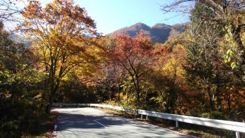 御坂旧道(3)