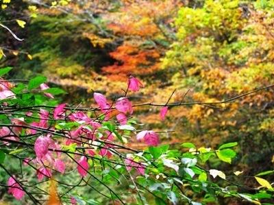 日本の風景0825