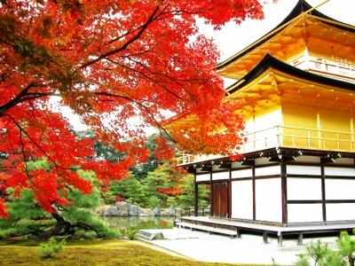 紅葉と金閣寺