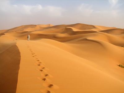 砂漠1218