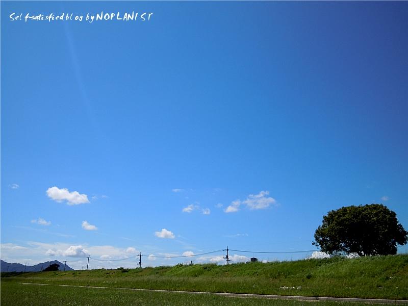 DSCN2505_fc.jpg