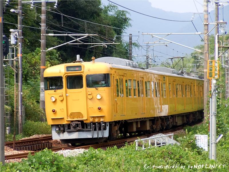 DSCN9009_115_a01.jpg