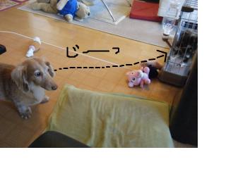 snap_oby10ri1118_201296172131.jpg