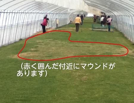 (ほなみPG) (5)