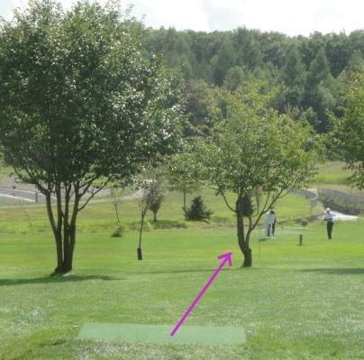 パークゴルフ研究・調査を中心とした雑記