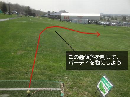 s-e-8.jpg