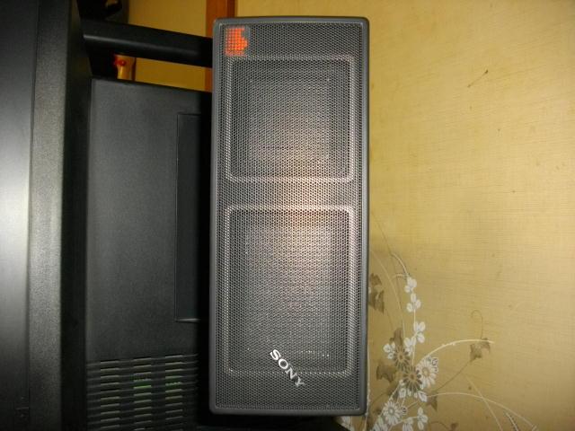 SRS-X100.jpg
