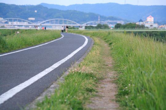IMG_6934.jpg
