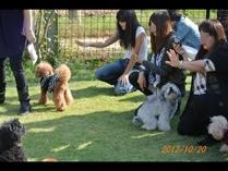 fc2blog_20121027061255a1a.jpg