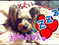 fc2blog_20121031073051b5a.jpg