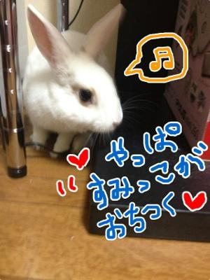 fc2blog_2012111705143748e.jpg