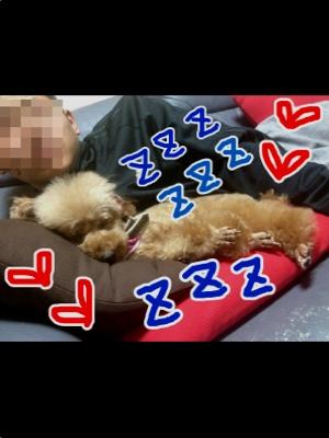 fc2blog_201211240553132cb.jpg