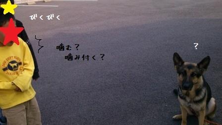 20130406131651c66.jpg