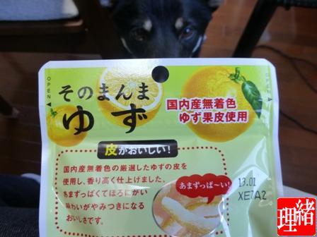 ライオン菓子ゆず5