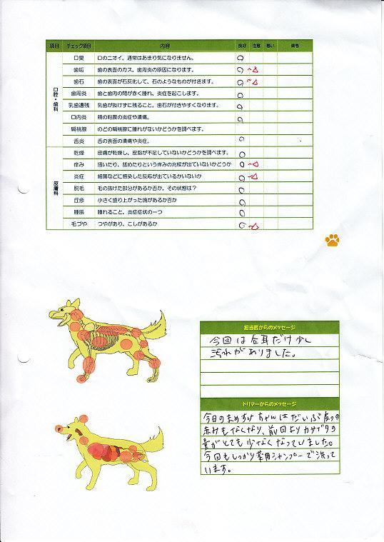 89病院川福うどん19