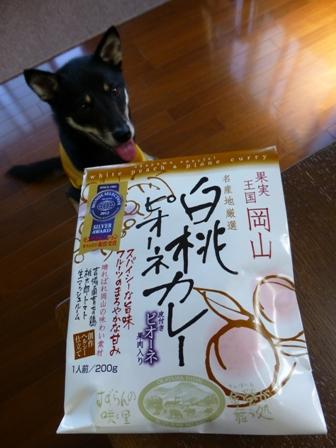 白桃カレー1