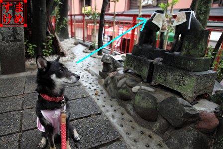 千代保稲荷神社29
