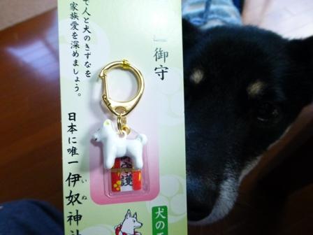 久遠ママポキ子土産11