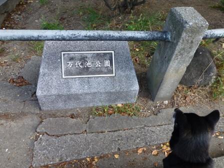 帝塚山WANBANA25