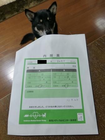 20121121173714262.jpg
